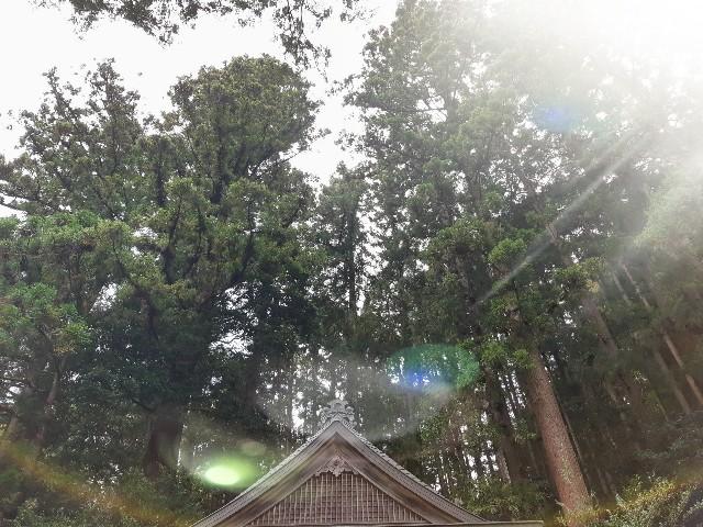 檜原村の神社
